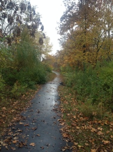 Fall running path 11-5-13